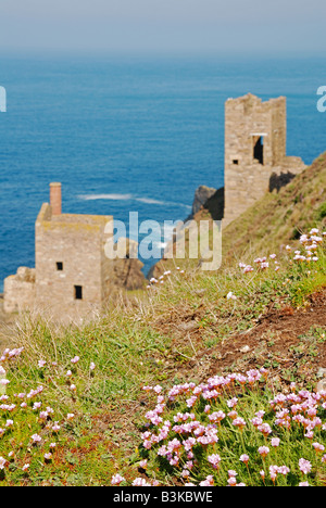 the botallack crowns engine houses on the coastline in penwith,cornwall,uk - Stock Photo