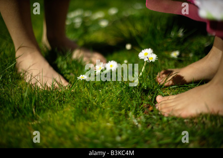 Six year old boy stands barefoot amongst daisies in lawn with his five year old sister - Stock Photo