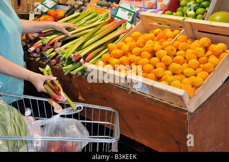 Interior of retail farm shop fruit produce on display woman shopper and trolley selecting rhubarb - Stock Photo