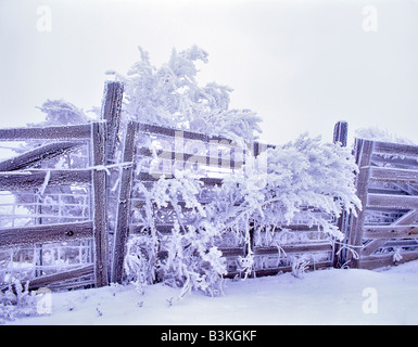 Fence with hoar frost Near Maupin Oregon - Stock Photo