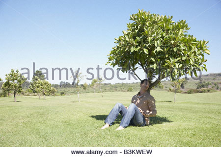 Man sitting in shade under tree - Stock Photo