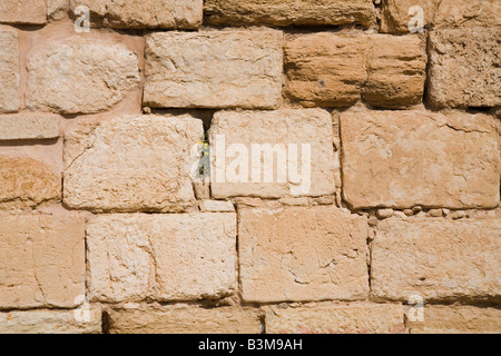 Ancient stone wall made of weathered sandstone blocks - Stock Photo