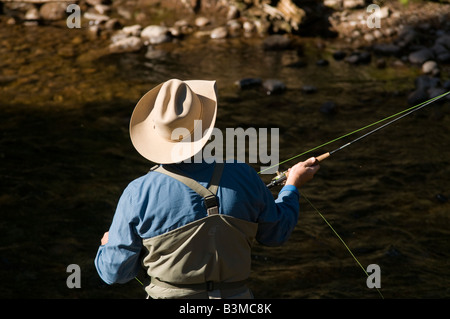 Local resident fly fishes for trout on Gore Creek, Vail, Colorado in August. - Stock Photo