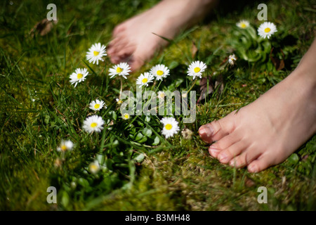 Six year old boy stands barefoot amongst daisies in lawn - Stock Photo