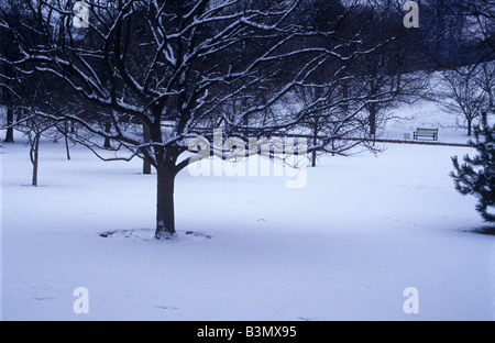 pristine snow in botanic gardens Edinburgh - Stock Photo