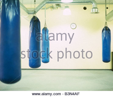 View of punching bags hanging in a room - Stock Photo
