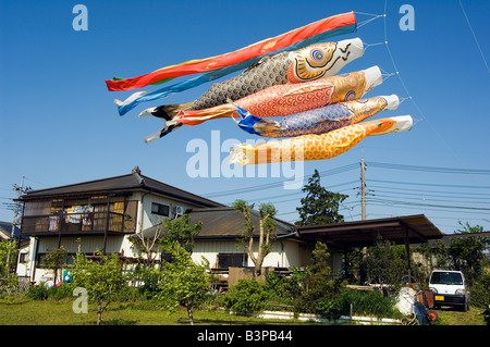 Japan, Kanagawa prefecture, Sagamihara near Tokyo Otako age giant kite flying festival koi nobori carp kites over - Stock Photo