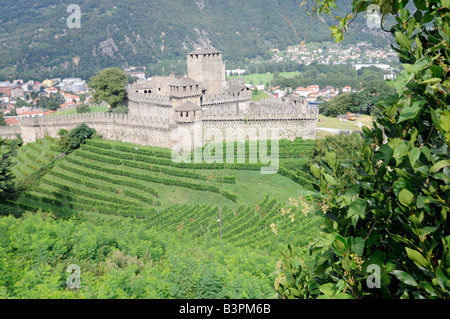 View of the Montebello castle surrounded by vineyard in Bellinzona, the capital of the Tessin region in Switzerland. - Stock Photo