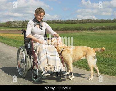 woman in wheelchair with labrador retriever / - Stock Photo