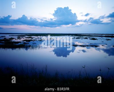 SWAMP, GRASSES & WATER AT MERRITT ISLAND NATIONAL WILDLIFE REFUGE, LAND OWNED BY NASA, FLORIDA, USA - Stock Photo