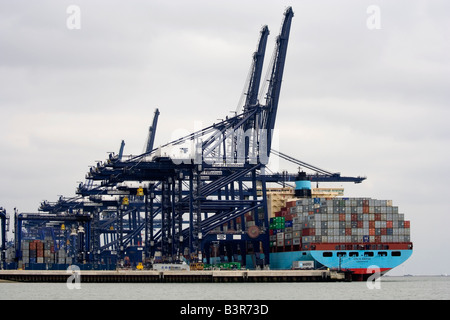 Container ship being loaded at Felixstowe dock - Stock Photo