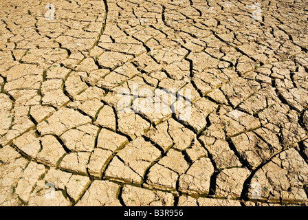 Cracked mud in a dry river - Stock Photo
