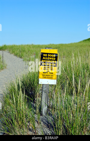 Warning sign prohibiting dog walking on the beach, Cape Cod National Seashore, Nauset Beach, Cape Cod, MA, USA - Stock Photo