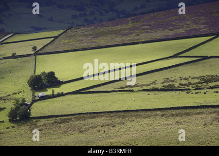 Field Patterns in Peak District - Stock Photo