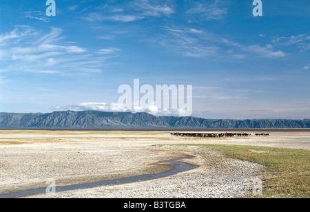 Tanzania, Northern Tanzania, Lake Eyasi. A false arm of the Great Rift Valley runs southeast from the Ngorongoro - Stock Photo