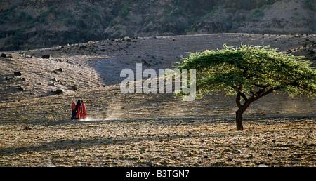 Tanzania, Northern Tanzania, Enkare Sero. Maasai women hurry home across barren volcanic land in the last rays of - Stock Photo
