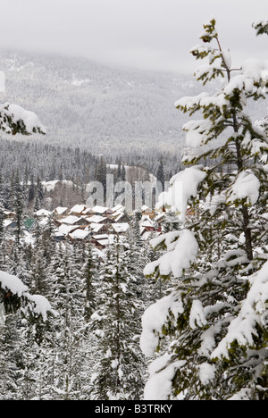 Canada, BC, Whistler. Whistler/Blackcomb resort housing seen from Lost Lake Trail system for hiking, biking, - Stock Photo