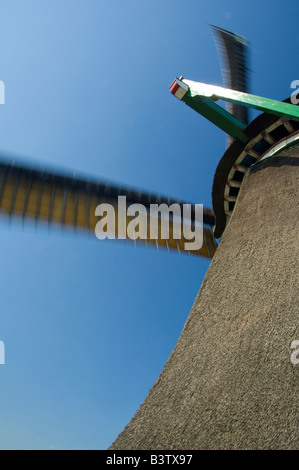 Netherlands, Zaandam. Zaanse Schans, historic open air museum, oil mill De Zoeker built in 1891, wind moving sails. - Stock Photo