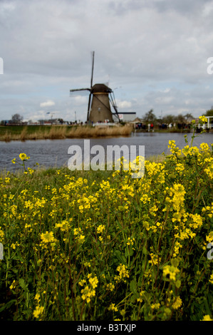 Netherlands (aka Holland), Kinderdijk. 19 historic windmills situated at the convergence of the Noord & Lek. UNESCO - Stock Photo