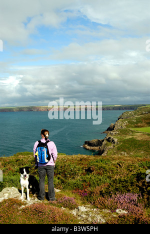 looking over St Bride s Bay Deer Park near Martins Haven Pembrokeshire - Stock Photo