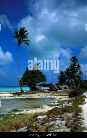 Oceania, Fanning Island, Kiribati. Lagoon with palm trees. - Stock Photo
