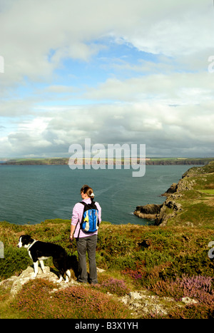 looking over St Brides Bay Deer Park near Martins Haven Pembrokeshire - Stock Photo