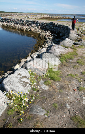 Muksalma Boulder Dam on the Solovetsky Islands in the White Sea, Russia - Stock Photo