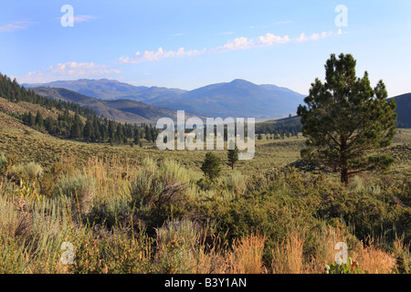 View of Bridgeport, California from Twin Lakes campground area Eastern High Sierras - Stock Photo