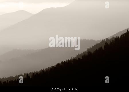 Sunrise and fog Taken from Hurricane Ridge Olympic National Park Washington - Stock Photo