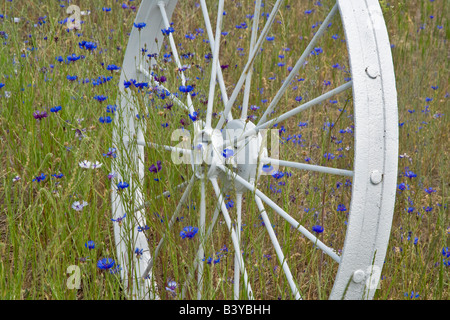 Decorative wheel in fence line The Palouse Washington - Stock Photo