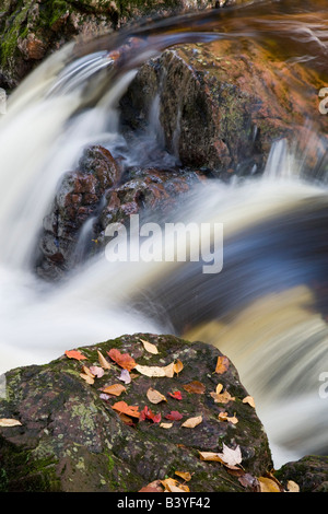 Overlooked Falls in the Little Carp River in the Porcupine Mountains Wilderness State Park in the UP of Michigan - Stock Photo