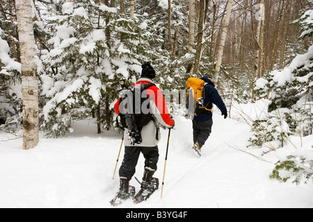 Snowshoers in the fresh snow on Mount Willard in New Hampshire's White Mountains.  Crawford Notch State Park. - Stock Photo
