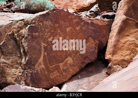 Namibia, Kaokoveld, Rock engravings at Twyfelfontein, Namibia. There are over 12000 paintings and engravings at - Stock Photo