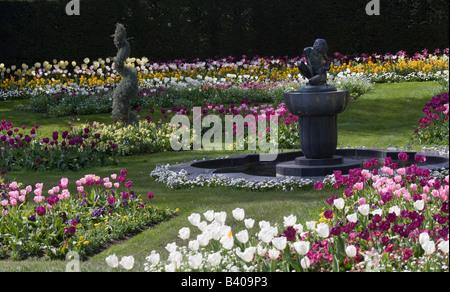 Formal flower bed Regents Park London GB UK - Stock Photo