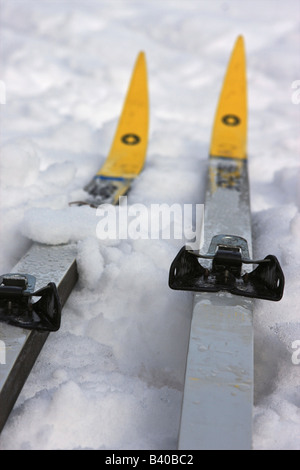 A pair of cross country skis resting in the snow. - Stock Photo