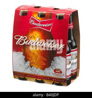 BUDWEISER BEER BOTTLE SIX PACK - Stock Photo