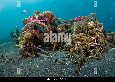 Corals and marine life slowly recycle and transform man made garbage and debris into small artificial reefs in Lembeh, - Stock Photo