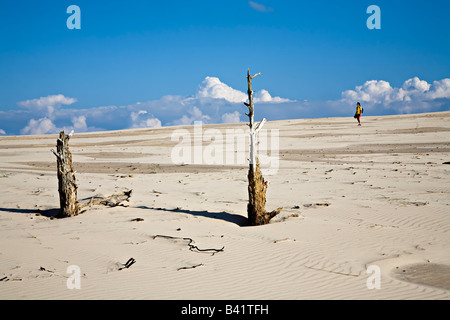 Woman walking in dunes with dead trees emerging from sand of Wydma Czolpinska dune Slowinski national park Poland - Stock Photo
