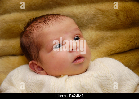 A two week old baby girl looking up with an expression of interest and wonder - Stock Photo