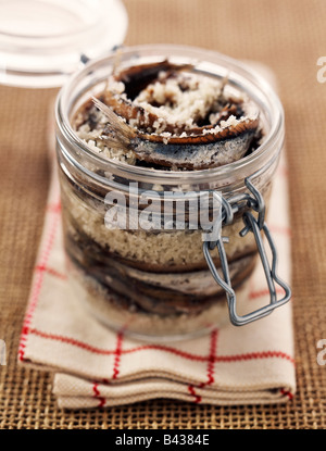 jar of anchovies in salt - Stock Photo