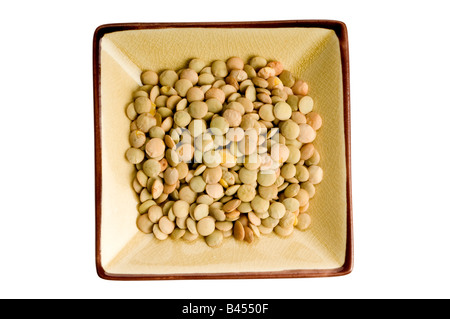 single plate of lentils - Stock Photo
