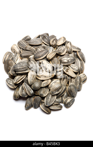 Sunflower seeds in shell on white - Stock Photo