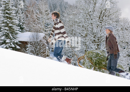 Austria, Salzburger Land, Altenmarkt, Young couple transporting fir tree on sled - Stock Photo