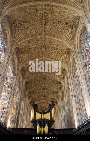 King's College Chapel vaulted ceiling and organ, Cambridge Cambs GB UK - Stock Photo