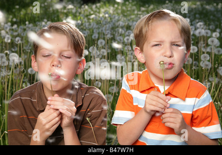 close-up photo of two blonde brothers playing with dandelions - Stock Photo