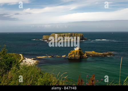 A coastal near Carrick-a-Rede Rope Bridge. County Antrim. Northern Ireland - Stock Photo