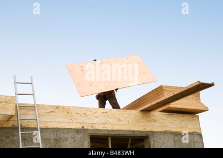 Construction worker carrying plywood - Stock Photo