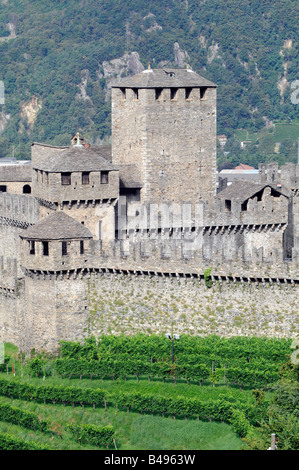 View of the Montebello castle surrounded by vineyards in Bellinzona, the capital of the Tessin region in Switzerland. - Stock Photo