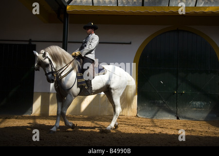The royal riding school City of Jerez de la Frontera Andalucia Spain - Stock Photo
