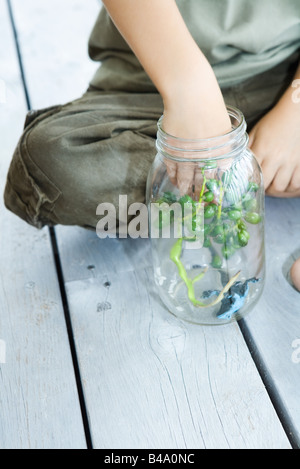 Boy putting berries and toy frog into glass jar, close-up - Stock Photo